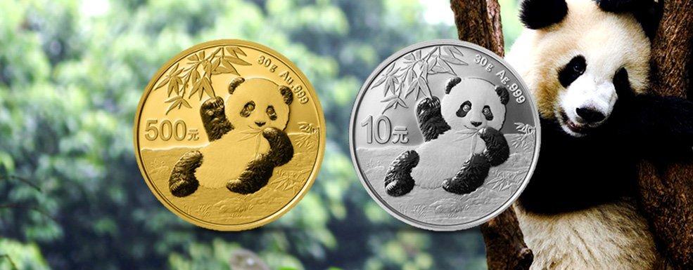 Gold und Silber aus China: Ein kleiner Panda wird flügge