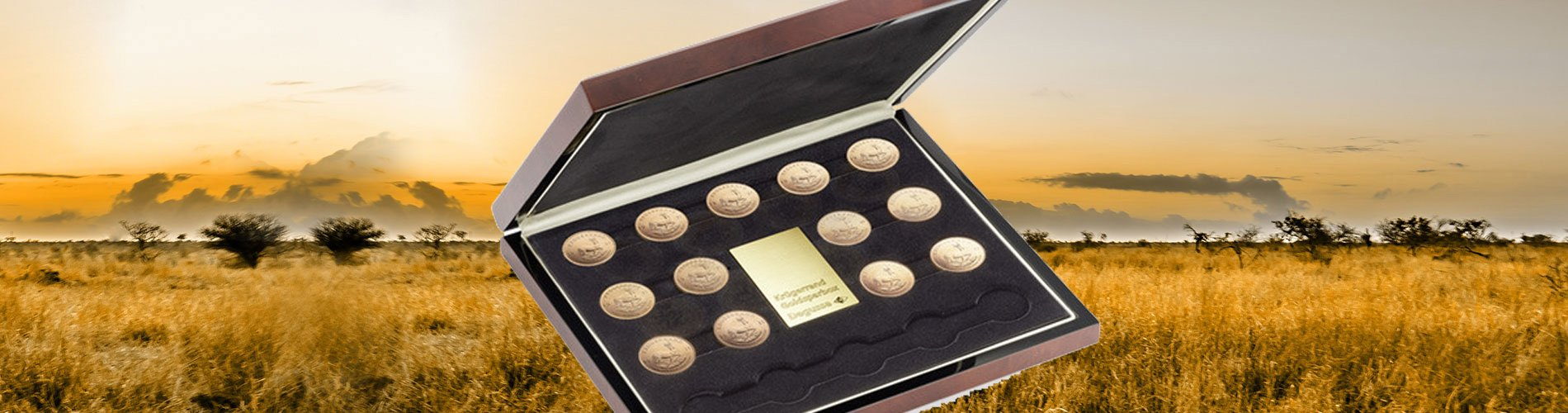 Goldsparbox Krügerrand